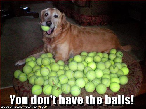 You don't have the balls!