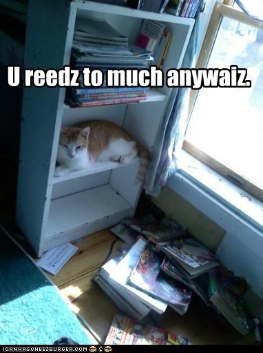 bookshelf,excuse,floor,mess,read,shelf,too much