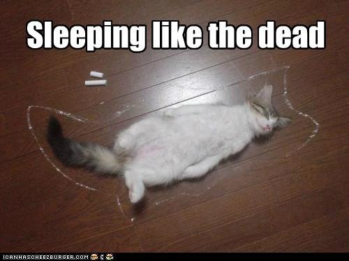 Sleeping like the dead
