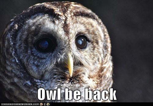 Owl-nold Schwarzenfeather