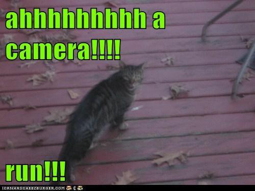 ahhhhhhhhh a camera!!!!  run!!!