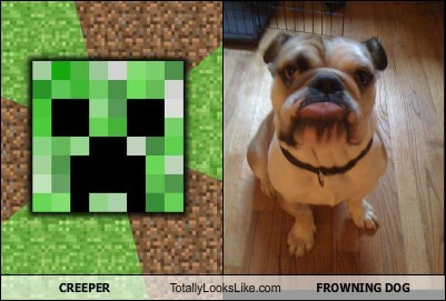 CREEPER Totally Looks Like FROWNING DOG