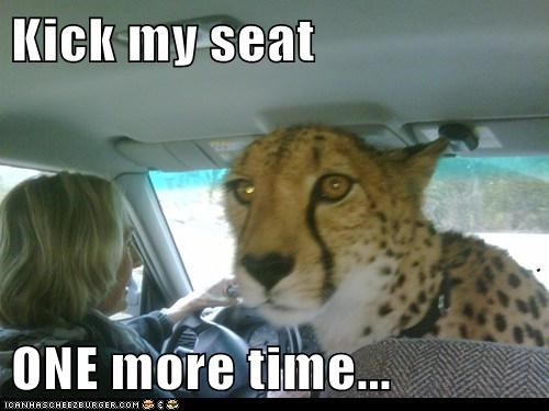 Kick my seat  ONE more time...