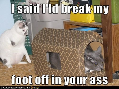 I said I'ld break my  foot off in your ass