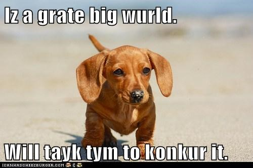 Iz a grate big wurld.  Will tayk tym to konkur it.