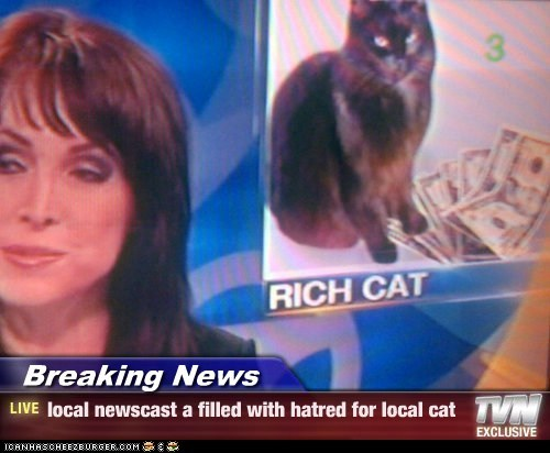 Breaking News - local newscast a filled with hatred for local cat