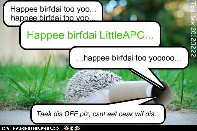 Happee birfdai LittleAPC!!!