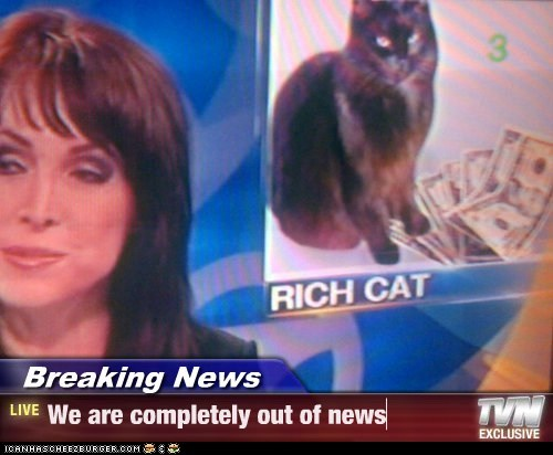 Cats,kittehs,political pictures,rich cat