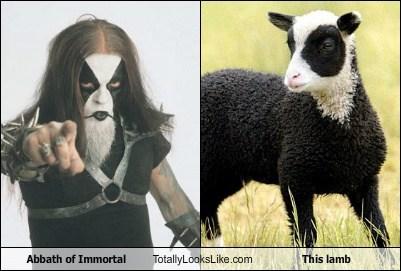 abbath,animal,funny,Hall of Fame,immortal,lamb,TLL