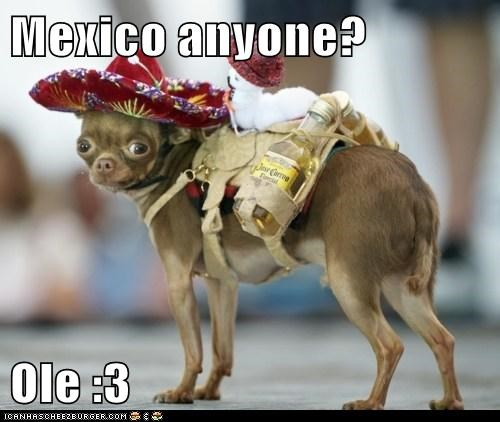 Mexico anyone?  Ole :3