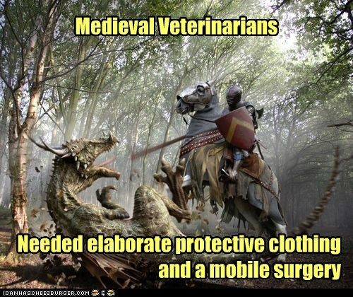 dentistry,dragon,elaborate,horse,knight,medieval,mobile,Primeval,surgery,veterinarian