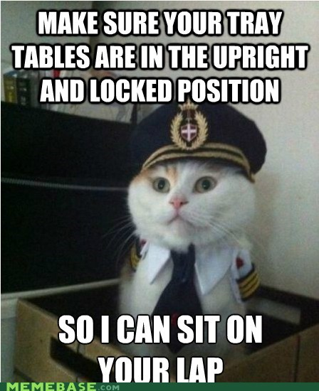 Captain Kitteh: Fasten Your Me