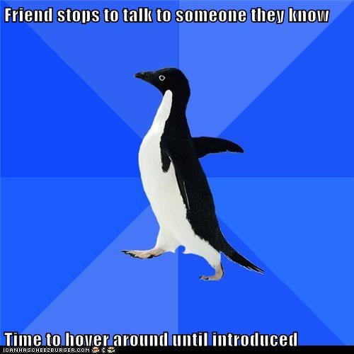Socially Awkward Penguin: Don't Mind Me