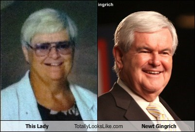 This Lady Totally Looks Like Newt Gingrich