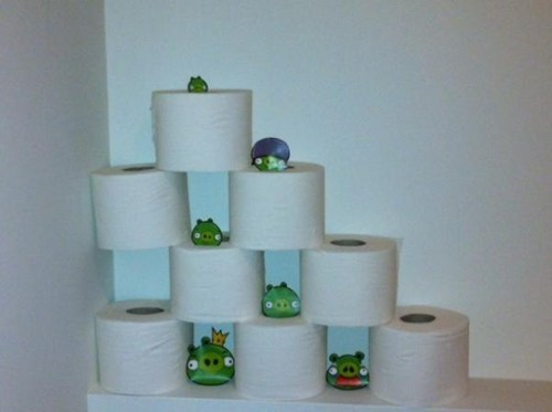 Playing Angry Birds on the Toilet IRL