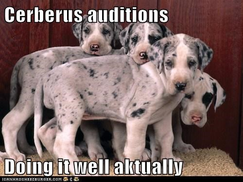 Cyoot Puppy ob teh day: Cerberus Auditions