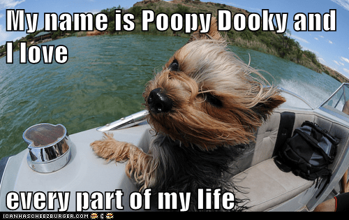 My name is Poopy Dooky and I love  every part of my life