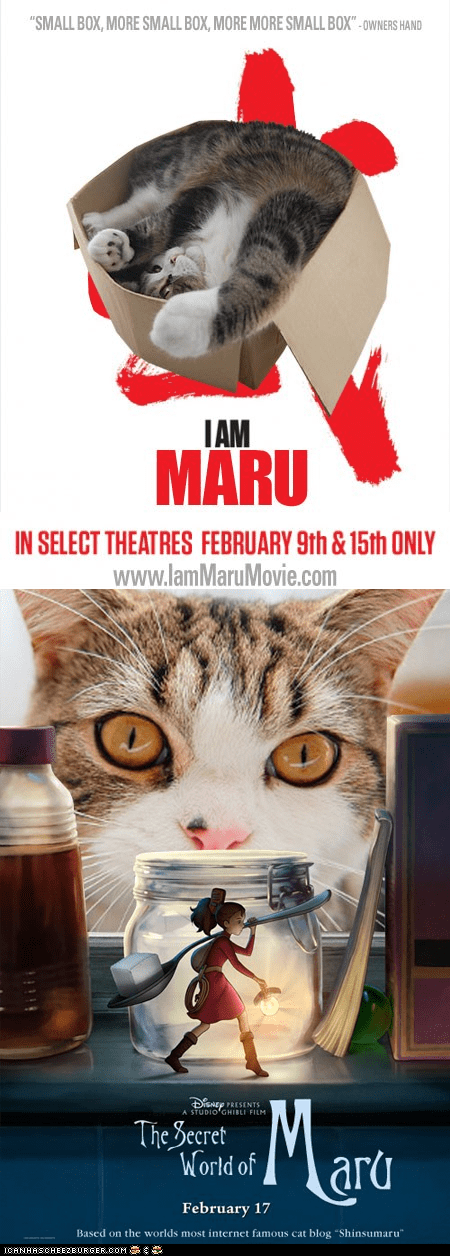 "Bonus Maru at The Oscars: ""I Am Bruce Lee"" and ""The Secret World of Arrietty"""
