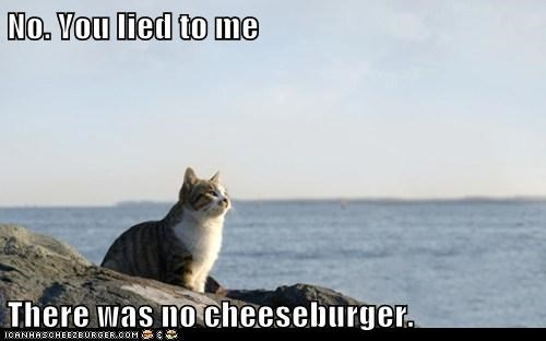 No. You lied to me  There was no cheeseburger.