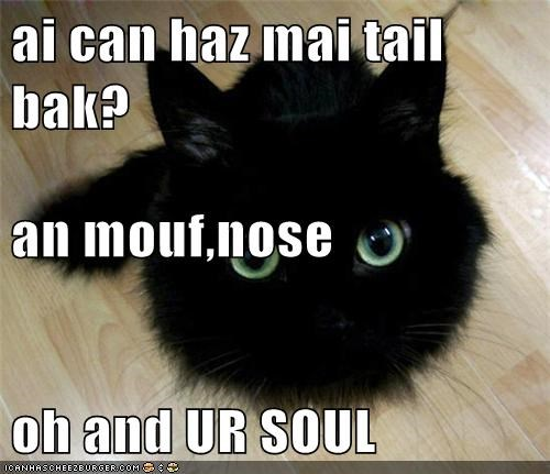 ai can haz mai tail bak? an mouf,nose oh and UR SOUL