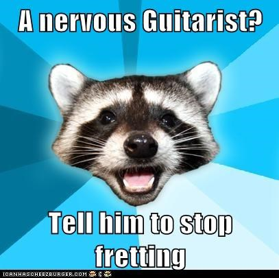 Animal Memes: Lame Pun Coon - No Stairway to Heaven