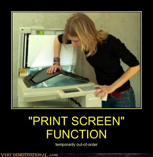 """PRINT SCREEN"" FUNCTION"