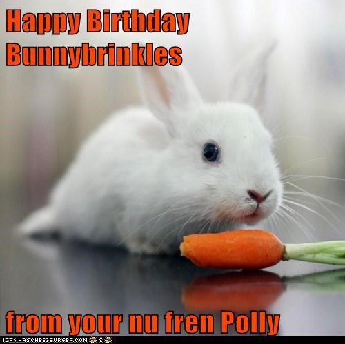 Happy Birthday Bunnybrinkles  from your nu fren Polly