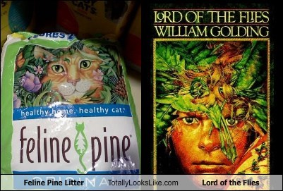 Feline Pine Litter Totally Looks Like Lord of the Flies