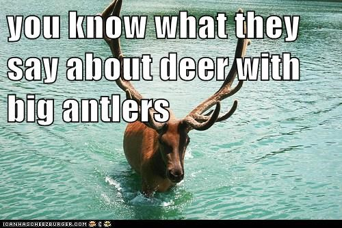 you know what they say about deer with big antlers