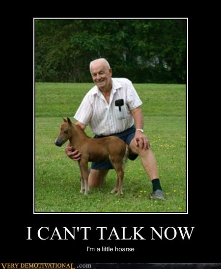 hoarse,horse,old guy,pun,Pure Awesome