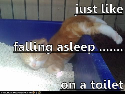 just like  falling asleep ....... on a toilet
