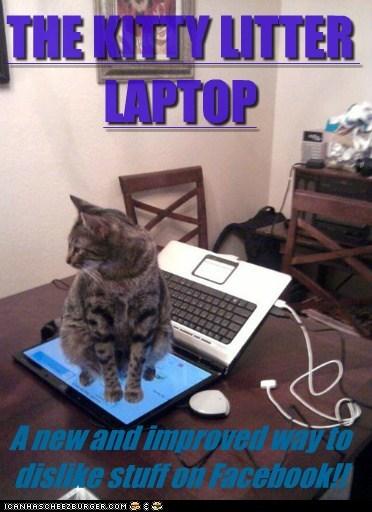 caption,cat litter,Cats,dislike,facebook,improved,kitty litter,laptop,new