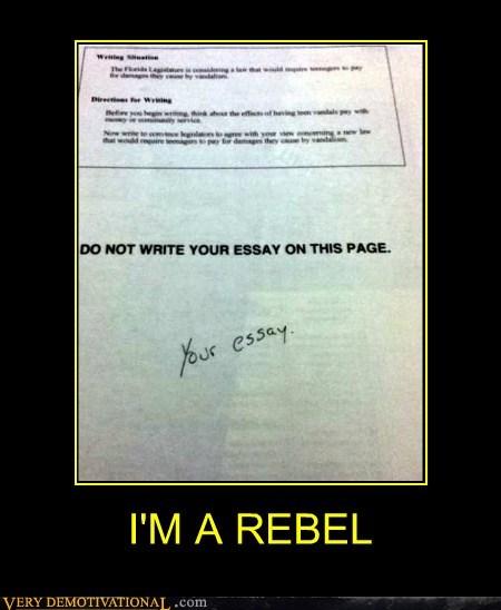 essay,hilarious,jerk,rebel,student