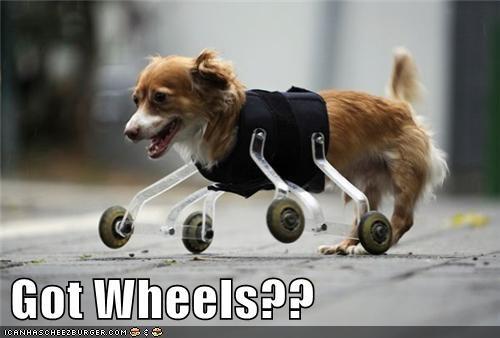Got Wheels??
