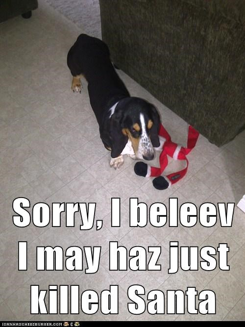 Sorry, I beleev I may haz just killed Santa