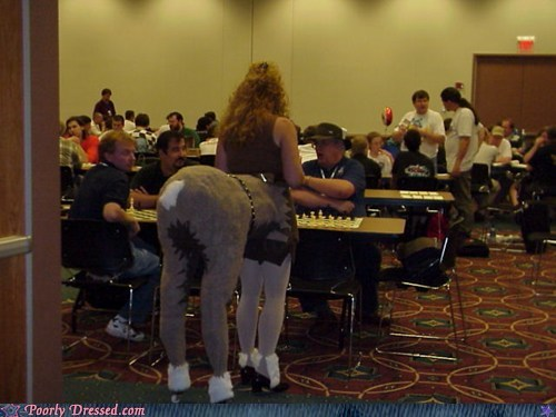 The Chess Tournament Specifically Said 'No Horses'!