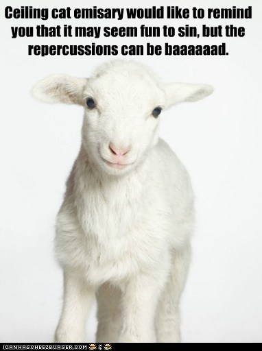 ceiling cat,ceiling cat emissary,lamb,repercussions,representative,sheep,sin