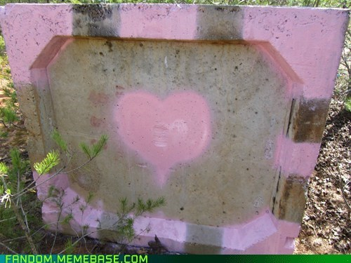 companion cube,It Came From the Interwebz,Portal,video games