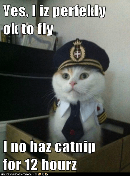 Yes, I iz perfekly   ok to fly  I no haz catnip      for 12 hourz