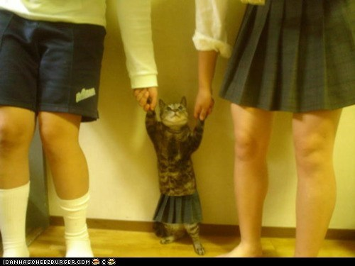 Kitteh's Auditioning for a Britney Spears Video!