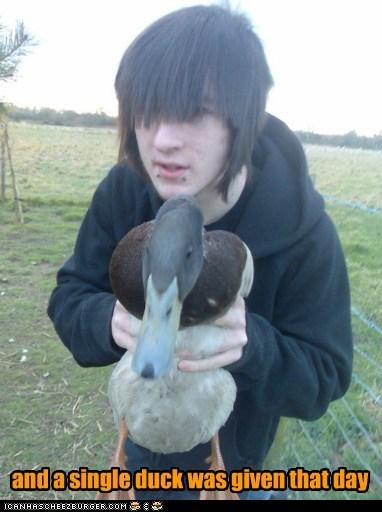 birds,ducks,Not A Single Duck,weird kid