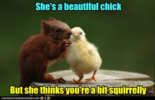 She's a beautiful chick
