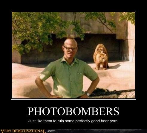 bears,hilarious,photobomb,pr0n,wtf