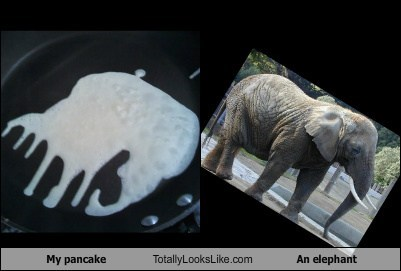 My pancake Totally Looks Like an Elephant