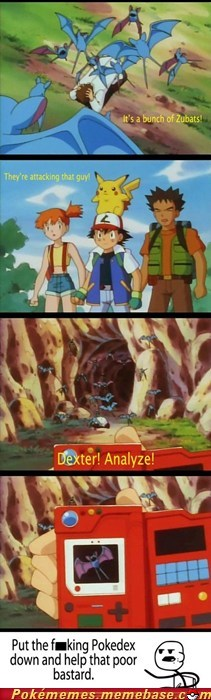 Ash Gives No Shuckle