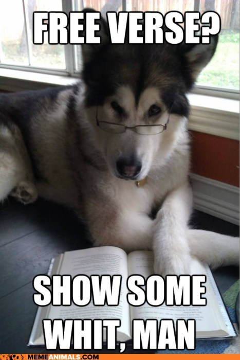 Condescending Literary Pun Dog,dogs,free verse,goggies,Memes,poetry,puns,walt whitman,wit