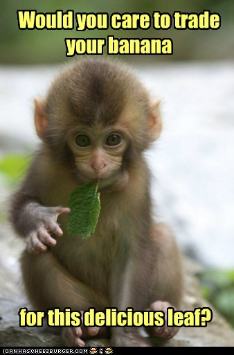 Babies,banana,cute,food,leaf,leaves,monkeys,small