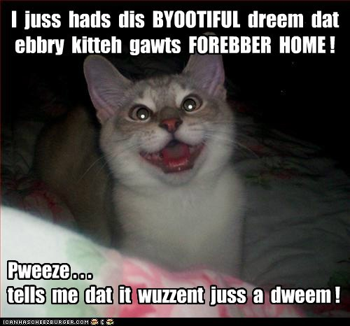 I  juss  hads  dis  BYOOTIFUL  dreem  dat  ebbry  kitteh  gawts  FOREBBER  HOME !