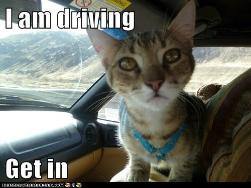 I am driving  Get in