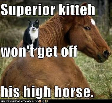 classics,high horse,horse,pun,superior,superiority